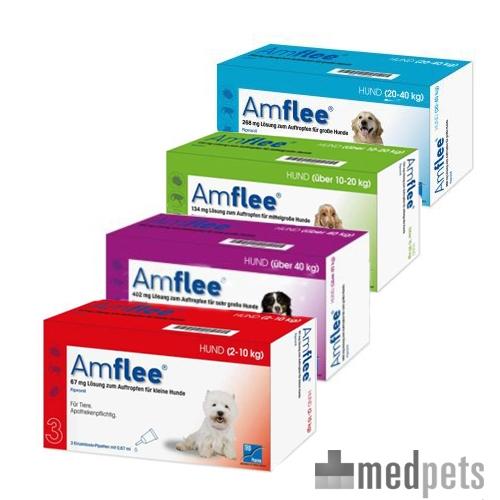 Product afbeelding van Amflee Spot-on Hond