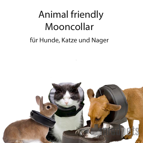 Animal Friendly Mooncollar