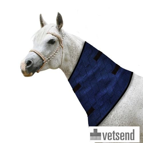Aqua Coolkeeper blanket and neck cooler for horses
