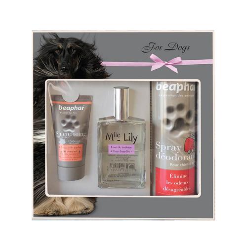 Beaphar Gift Box