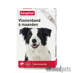 Product afbeelding van Beaphar Vlooienband Hond - 6 maanden