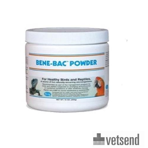 Bene Bac Plus Intestinal Support Birds Amp Reptiles