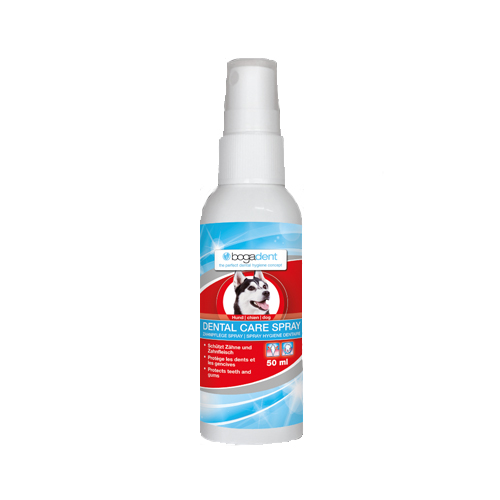 Bogadent Dental Care Spray - Hund