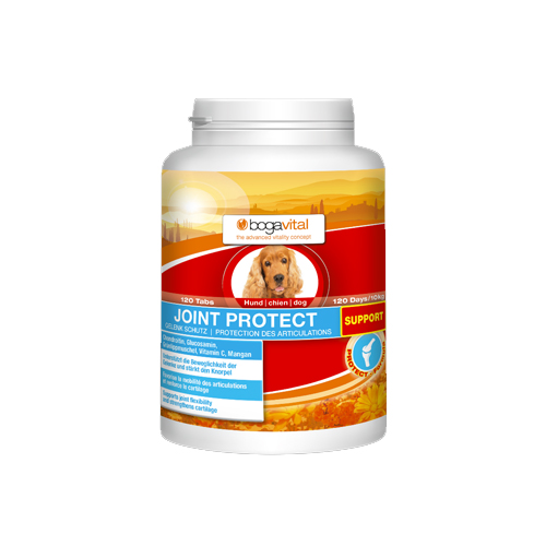 Bogavital Joint Protect Support for Dogs
