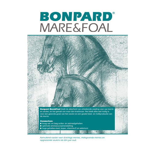 Bonpard Mare & Foal