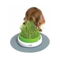 Catit Senses 2.0 Grass Planter Bac Herbe à Chat
