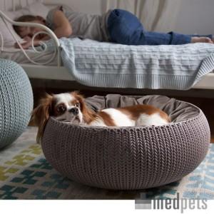 Produktbild von Curver Cozy Pet Bed