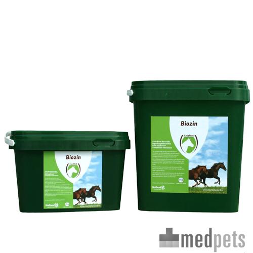 Excellent Biozin für Pferde