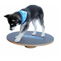 FitPAWS Wobble Board