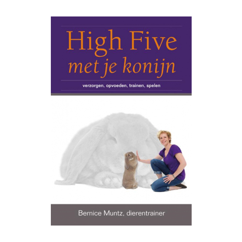 High Five met je Konijn