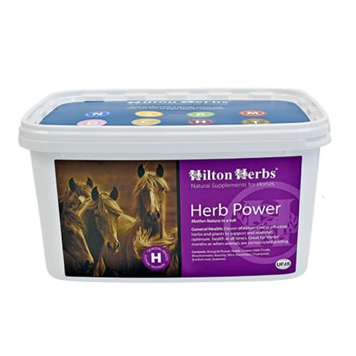 Hilton Herbs Herb Power for Horses
