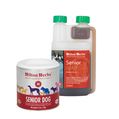 Hilton Herbs Senior for Dogs