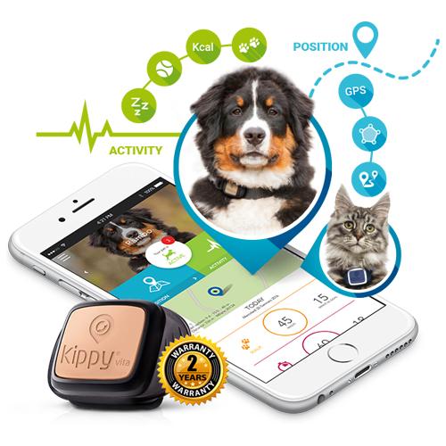 Kippy Vita - GPS + Activity Tracker