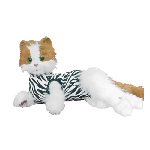 Medical Pet Shirt Katze Zebra-Muster