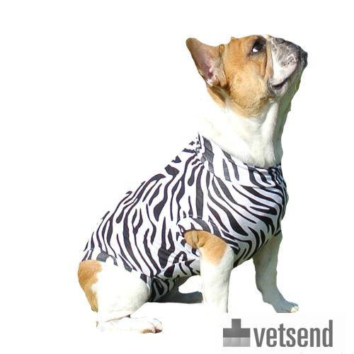 Medical Pet Shirt Zebra Dogs Order Online