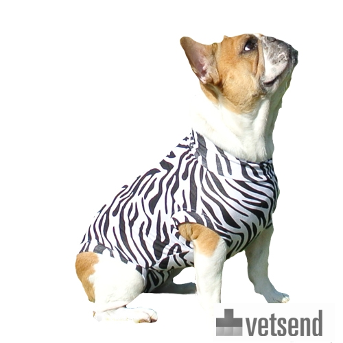 Medical Pet Shirt Dog - Zebra Print