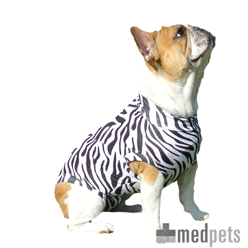 Medical Pet Shirt Hund Zebra-Muster
