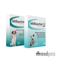 Milbactor Hond