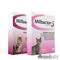 Milbactor Vermifuge pour Chat