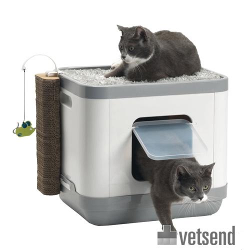 Moderna Cat Concept Reviews
