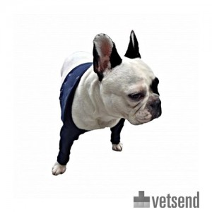 Mps taz2 front leg sleeves dogs shop now for Medical pet shirt dog