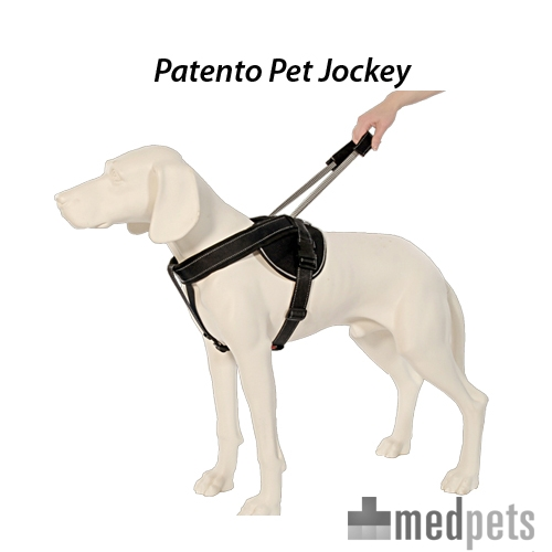 Produktbild von PatentoPet Geschirr