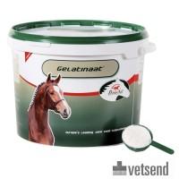 PrimeVal Gelatinate Horse