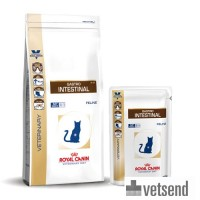 Royal Canin Gastro Intestinal Cat