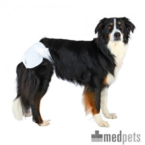 Product afbeelding van Trixie Diapers for Female Dogs
