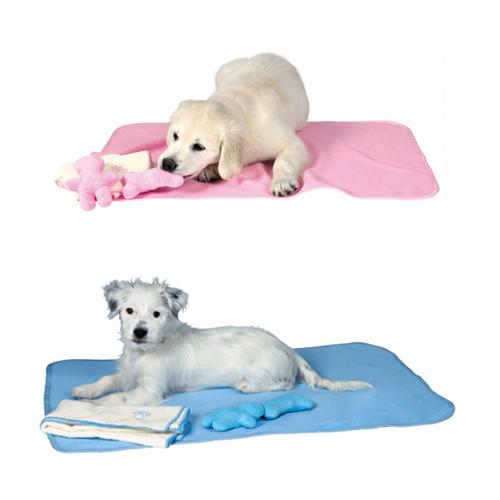 Trixie Puppy Set