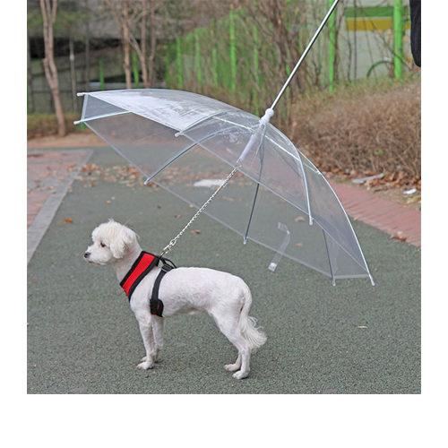 Puppia Regenschirm