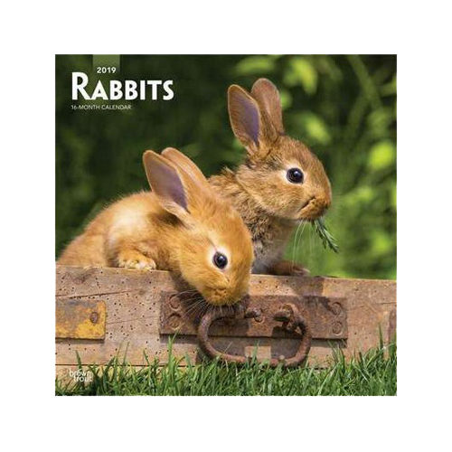 Rabbits Kalender 2019