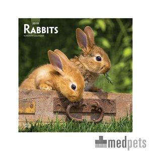 Product afbeelding van Rabbits Kalender 2019