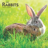 Rabbits Kalender 2020