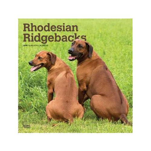 Rhodesian Ridgebacks Kalender 2019