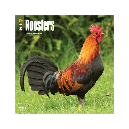 Roosters Kalender 2018