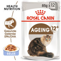 Royal Canin Ageing 12+ in Jelly - Katzenfutter