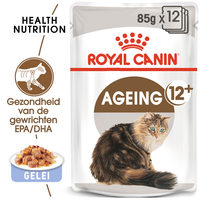 Royal Canin Ageing 12+ in Jelly - Kattenvoer