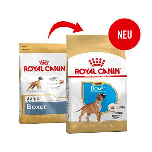 Royal Canin Boxer Junior - Hundefutter