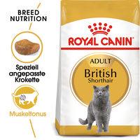 Royal Canin British Shorthair Adult - Katzenfutter