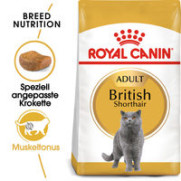 Royal Canin British Shorthair Adult - Katzenfutter