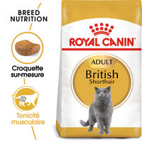 Royal Canin British Shorthair Adult - Alimentation pour Chats