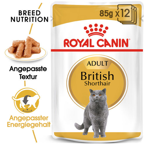 Royal Canin British Shorthair Adult Wet - Katzenfutter