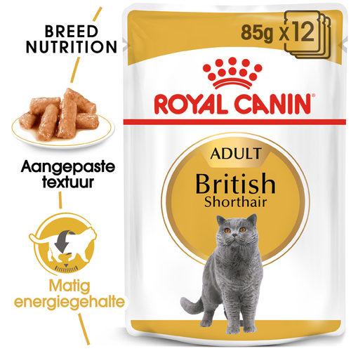 Royal Canin British Shorthair Adult Wet - Kattenvoer