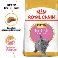 Royal Canin British Shorthair Kitten - Kattenvoer