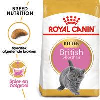 Royal Canin British Shorthair Kitten - Kattenvoer
