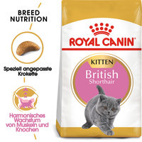 Royal Canin British Shorthair Kitten - Katzenfutter