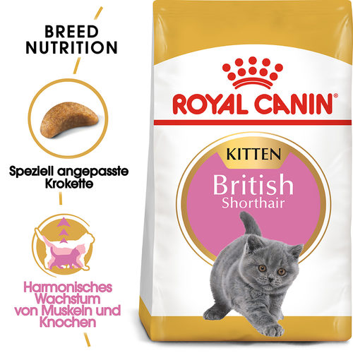 Royal Canin British Shorthair Kitten - Katzenfutter