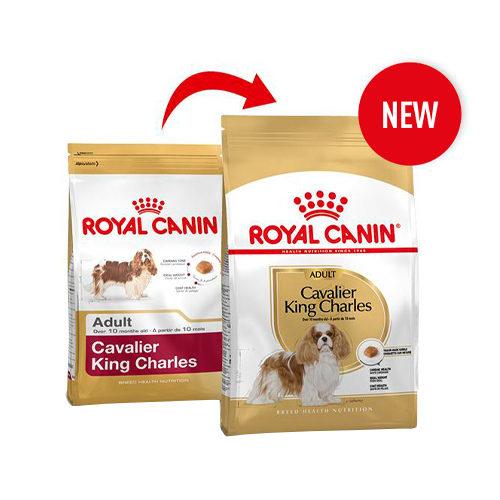 Royal Canin Cavalier King Charles Adult - Dog Food