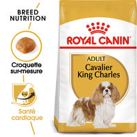 Royal Canin Cavalier King Charles Adult - Alimentation pour Chiens